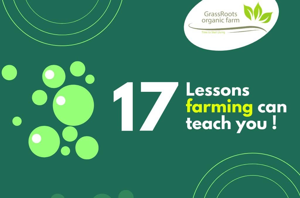 17 Lessons farming can teach you !