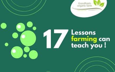 17 Lessons farming can teach you !